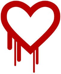 Critical infrastructure put on 'Heartbleed Bug' alert