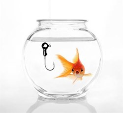 Only 1 in 5 professionals can spot phishing scams