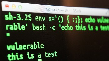 ICYMI: Shellshock attacks, cyber Armageddon and unpredictable hackers